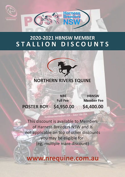 NorthernRivers-HBNSW-2020-2021-StallionD