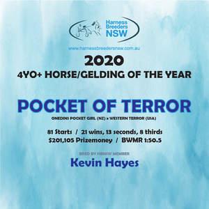 2020-HBNSW-AwardWinner-4YO+-HORSE-GELDIN