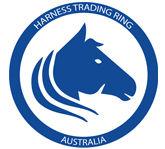 harness trading ring australia.jpg