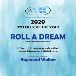 2020-HBNSW-AwardWinner-3YO-FILLY.jpg