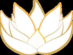 lotus-1889735_960_720.png