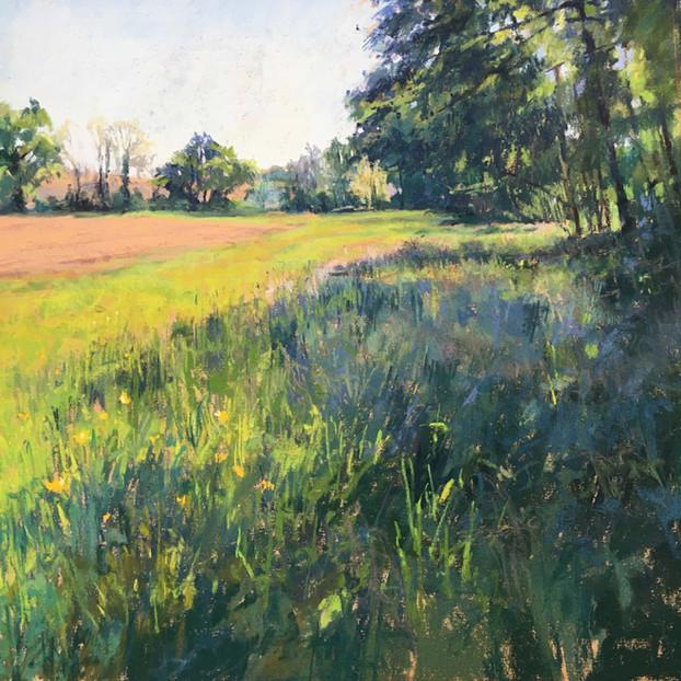 Prairie in Corronsac
