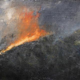 Incendio en un monte