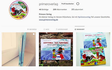 Instagram Rezension.png