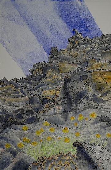 BOYD McMILLAN - Pagoda Daisies