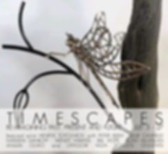 Timescapes Instagram .jpg