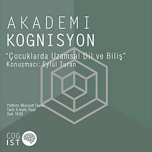 akademi kognisyon 9.3-05.png