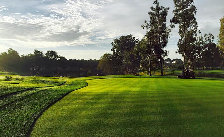 Kaya_golf.3.jpg