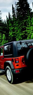 Trees-Jeep-Wrangler-2432059.jpg