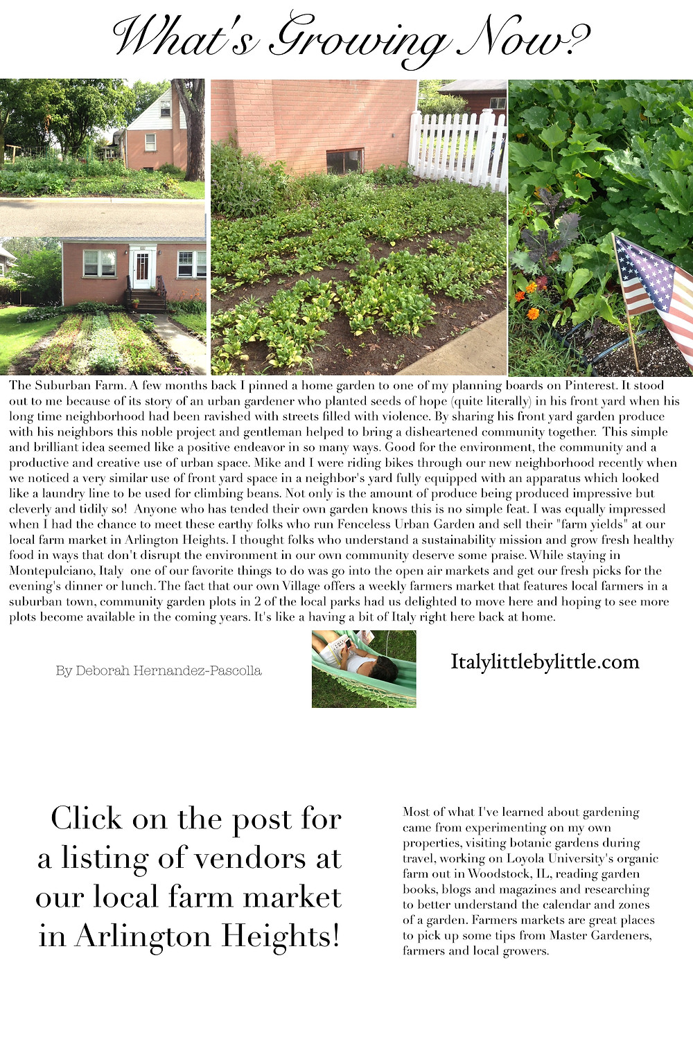 Suburban Farm - growing productive, safe and healthy crops in town