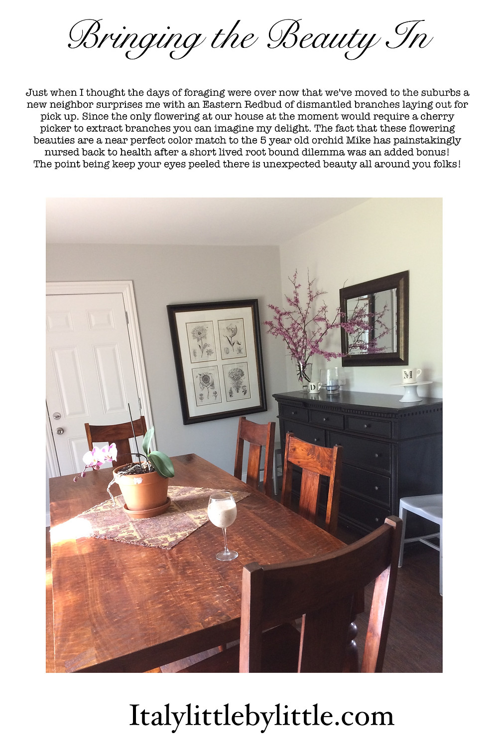 Pascolla Dining Area in Arlington Heights