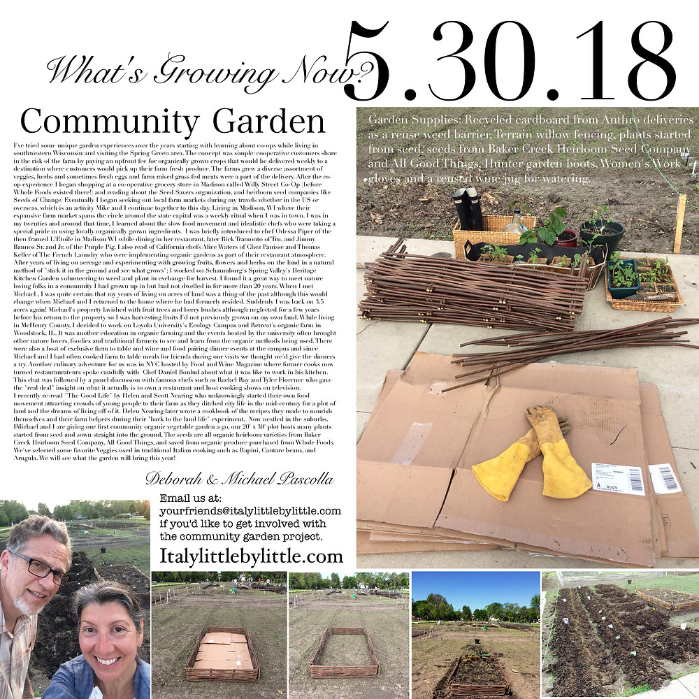 What's Growing Now? Community Gardens