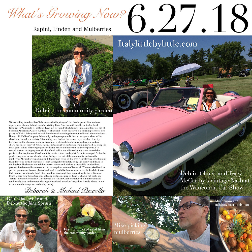 What's growing in the Pascolla's garden this June, fresh organically grown salads and car shows
