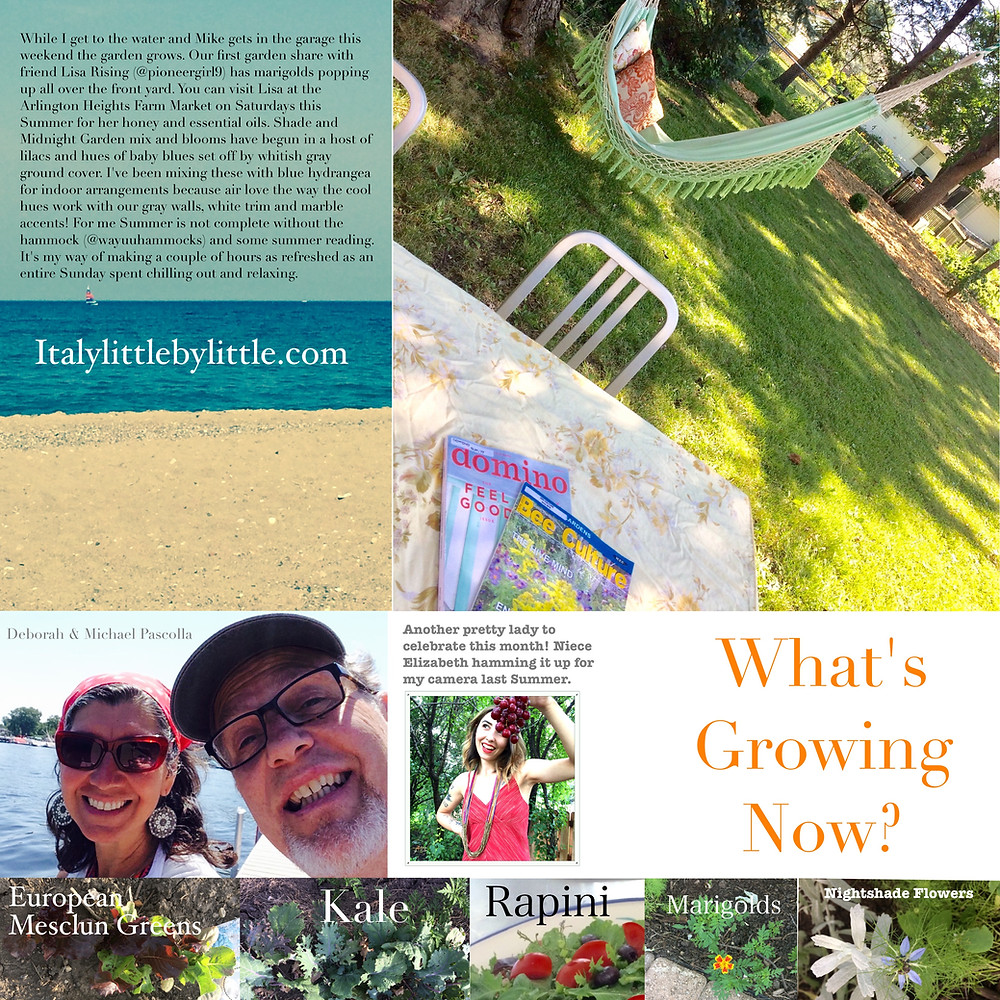 Summertime Rituals and what's growing in the community garden these days.