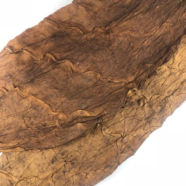 Dominican Cigar Binder