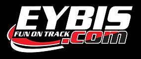 EYBIS_logo.png
