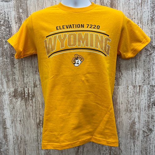 CI Sport Men's Wyoming Elevation Tee Shirt