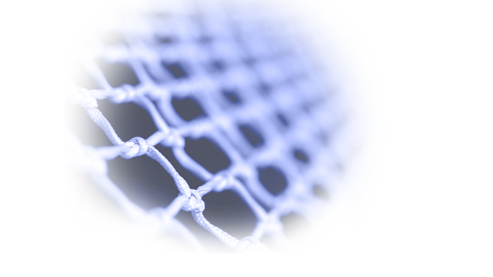 net background.png