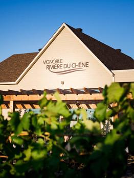 Vignoble Riviere du Chene.jpg