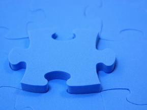 Autism Diagnostic Interview - Revised (ADI-R)