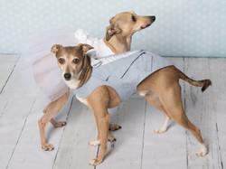 Zuko et Navi prêts pour le mariage