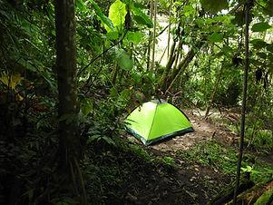 Campingbosquemanizales.JPG