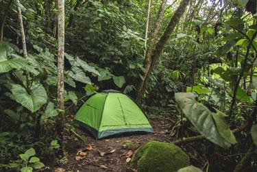 camping manizalesbosque.jpg