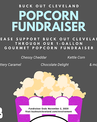 Copy of Popcorn Fundraiser.png