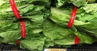 FDA, CDC narrow focus of romaine recall
