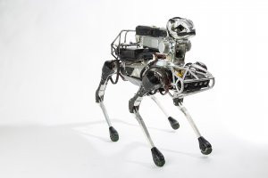 New robot 'dogs' being created for the military