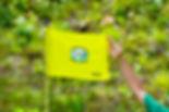 W GREEN CUFlag&Hand.jpg