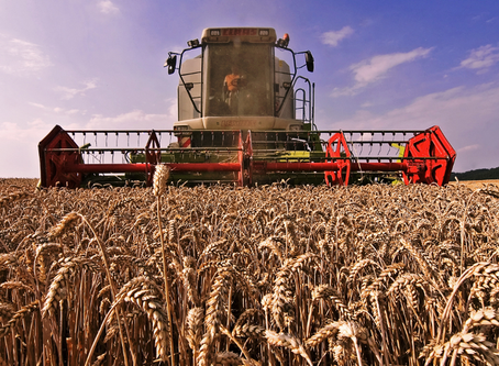 Bread production supply chain amid of a pandemic