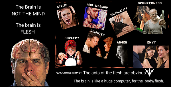 BRAIN MIND COLLAGE june canva.png
