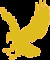 EAGLE GOLD flying.png