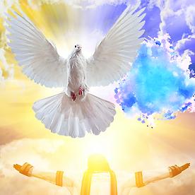 HOLY SPIRIT3 pngwing.png