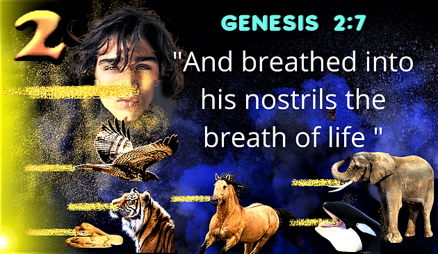 GENESIS BREATH OF LIFE canva.png