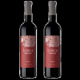 Lorca-Poetico