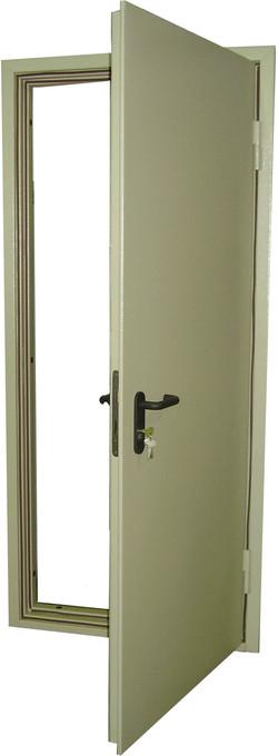 Дверь входная1