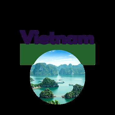 Vietnam button.png