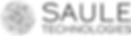 Logo SAULE.png