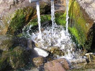 コラム第5回〈水のこと〉
