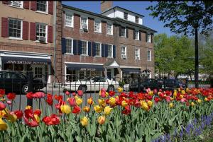 Jersey Shore Style Princeton