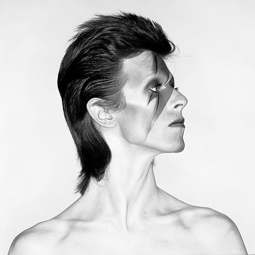 David Bowie-Aladdin Sane portrait