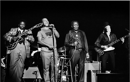 BB King, James Cotton, Muddy Waters, and Johnny Winter.