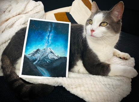 A Galaxy Size Cat