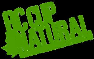 BCCUP2018_LogoGreen2.png