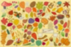 autumn, fall, leave, leaves, fallenleaves, mushroom, music, musician, composition, writingmusic