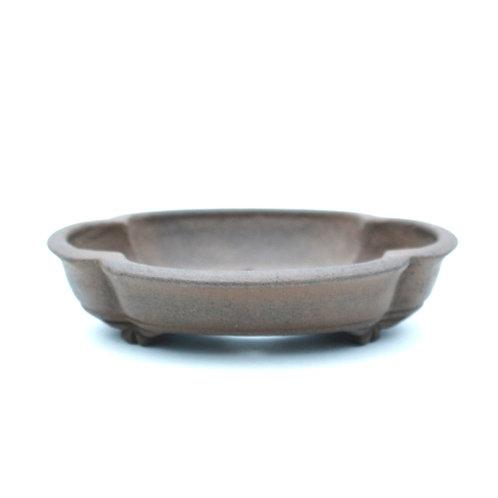 Raimondi Bonsai Pot 15,5cm
