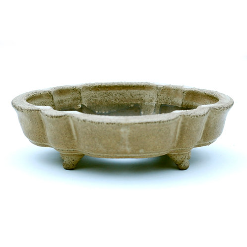 Raimondi Bonsai Pot 15,5cm