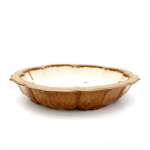 Raimondi Bonsai Pot 29cm Gold